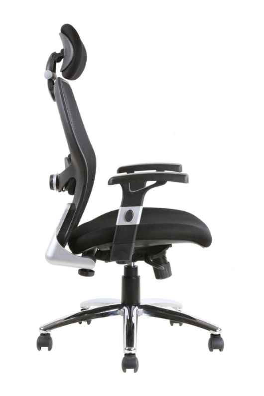 Elegant Workplace Chair Again Assist. Office Chair Back Support