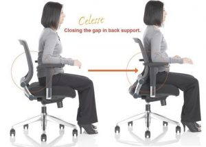 office chair with lumbar support portable lumbar support for office chair the back pain relieving in incredible best lower back support for office chair x