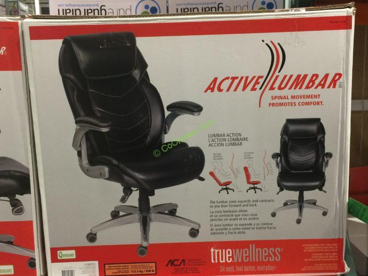 true innovations active lumbar chair