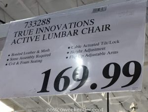 true innovations active lumbar chair true innovations true wellness active lumbar chair costco