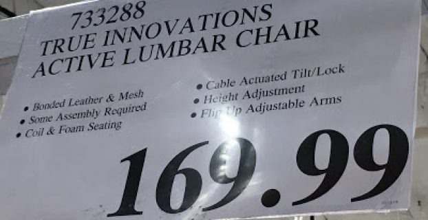 true innovations active lumbar chair true innovations true wellness active lumbar chair costco